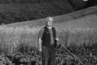 landwirtschaft-plettenberg1
