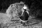 landwirtschaft-plettenberg14